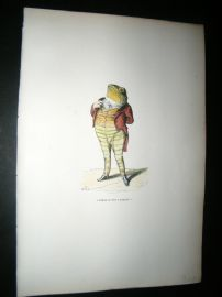 Grandville des Animaux 1842 Hand Col Print. Frog Toad Man